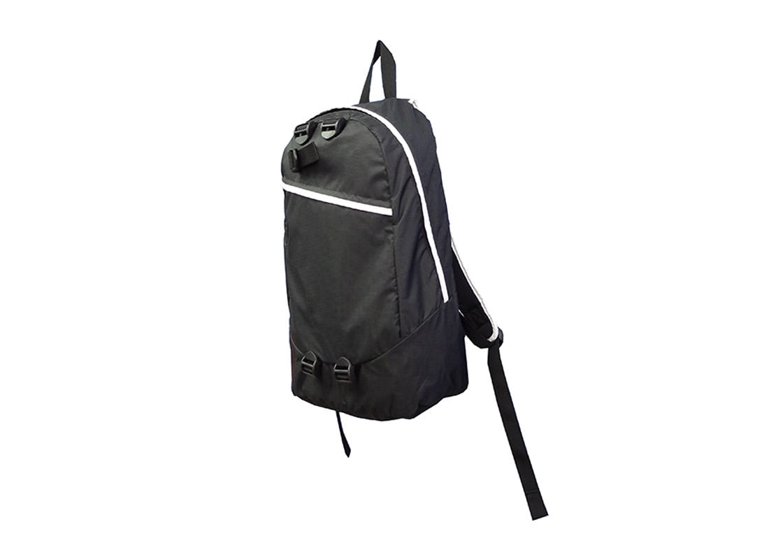 Simple Black Backpack with White Zippers