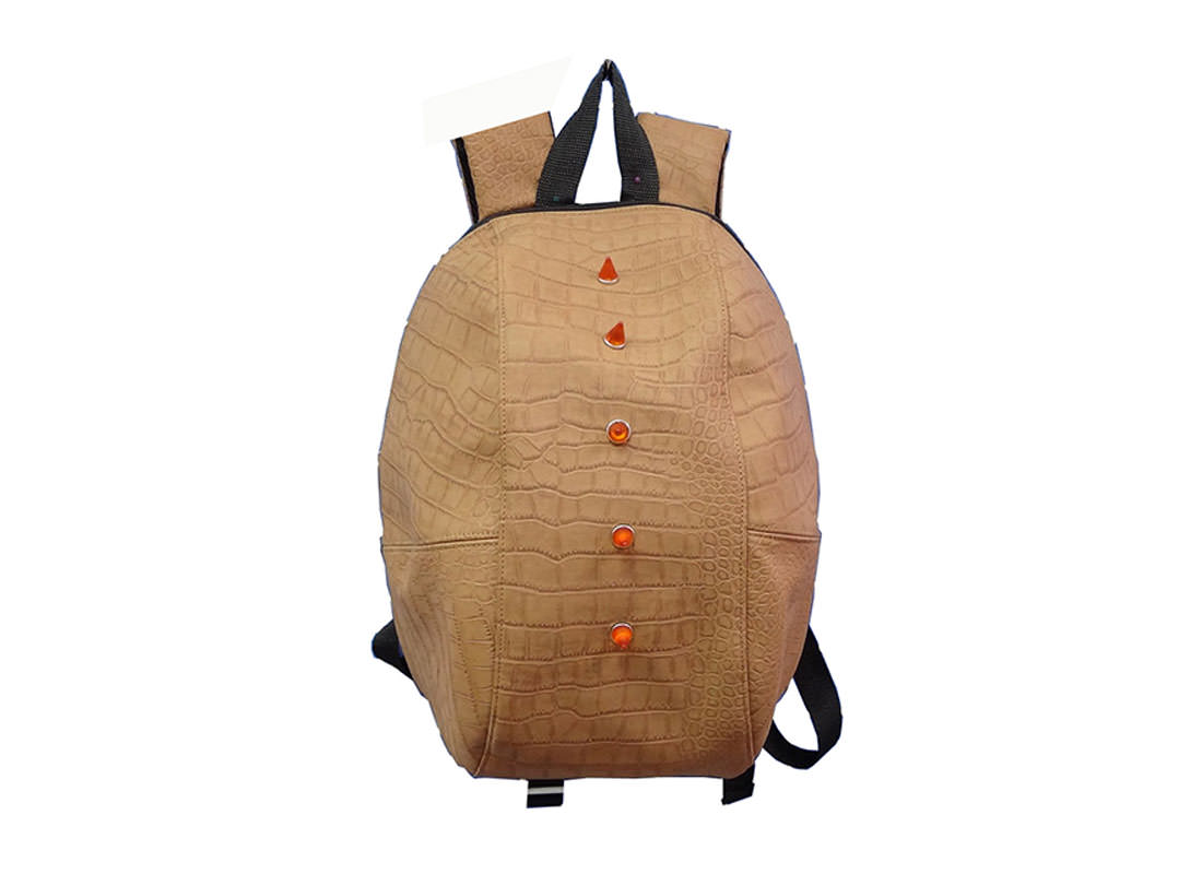 Fashion Backpack for Men & Boys