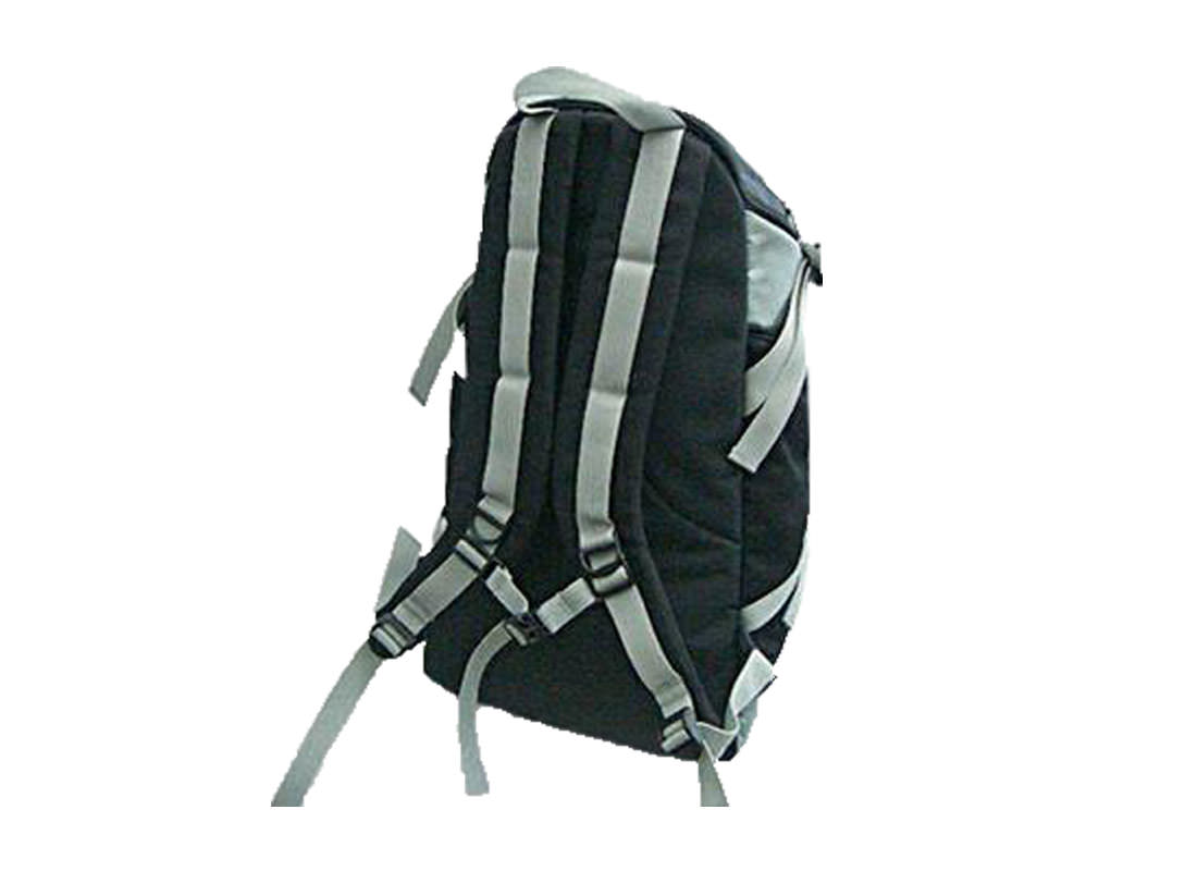 Backpack with many pockets Back