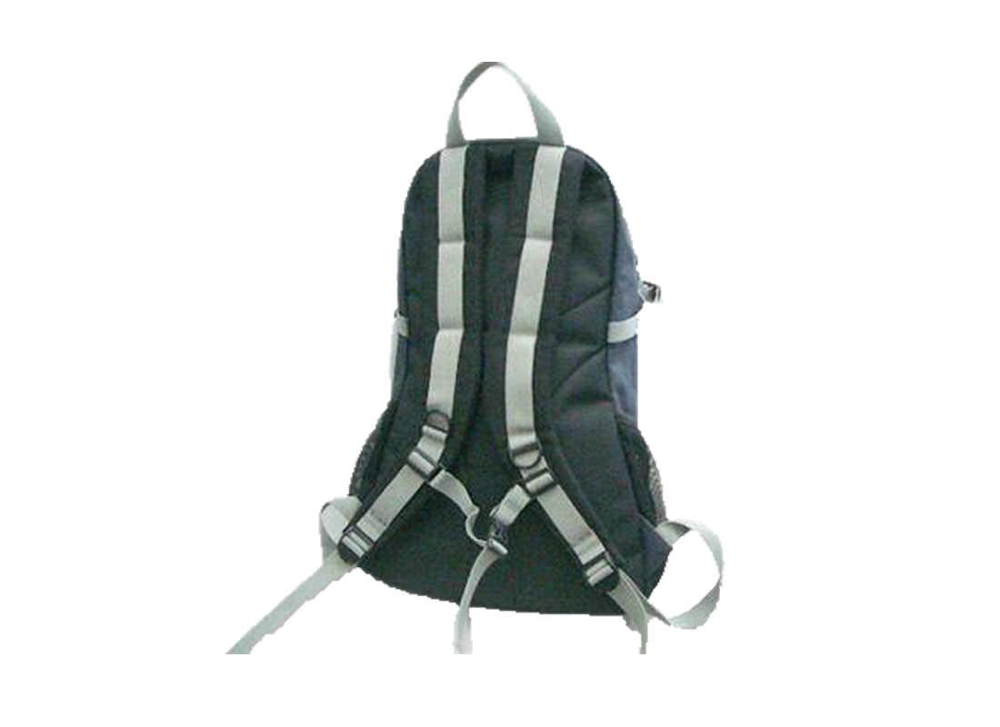 Black & Silver Backpack Back