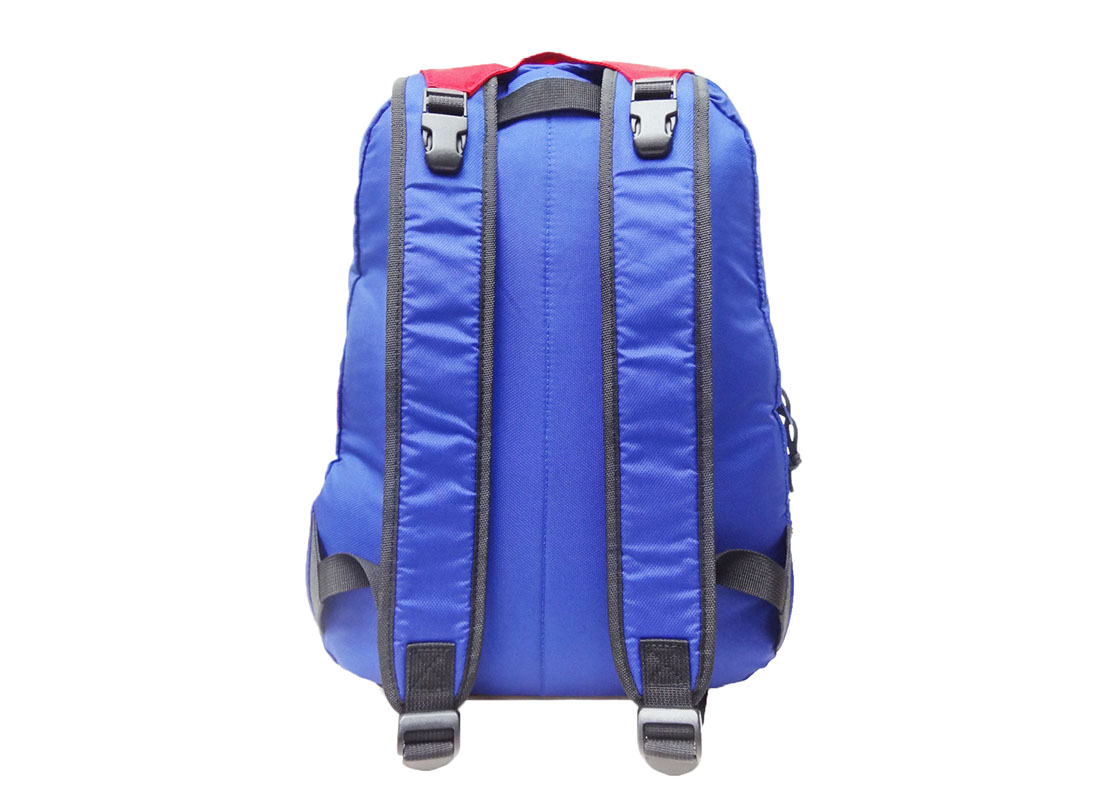 Sporty Backpack in Blue & Red back