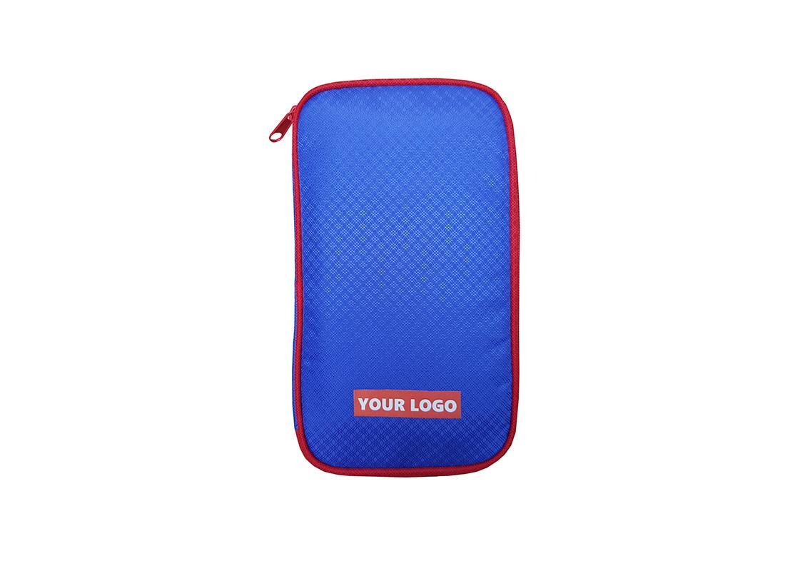 Passport Holder in Blue