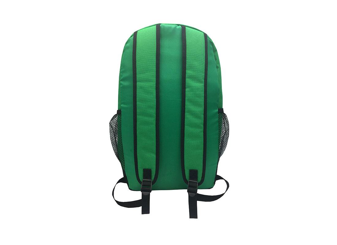 Backpack in green - back