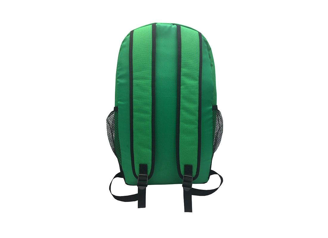 Backpack in green - back