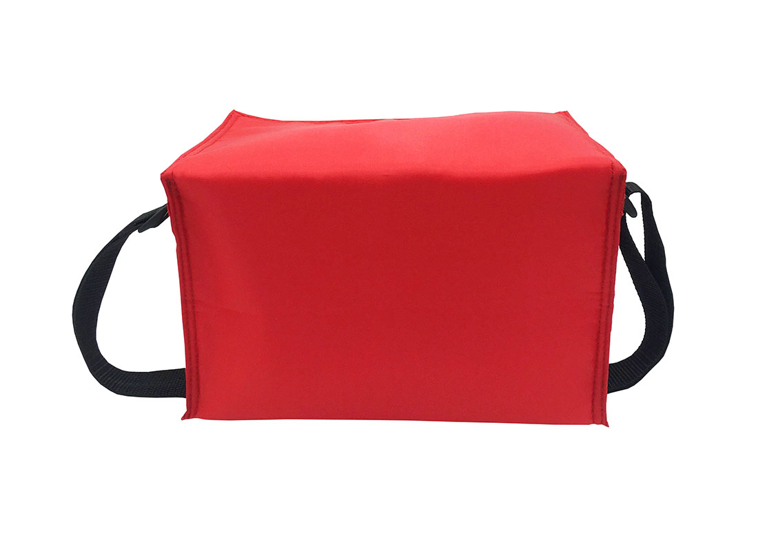 6 cans cooler bag in red back